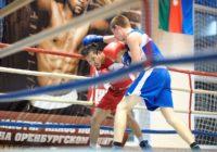 Оренбург примет кубок Зауралья по боксу