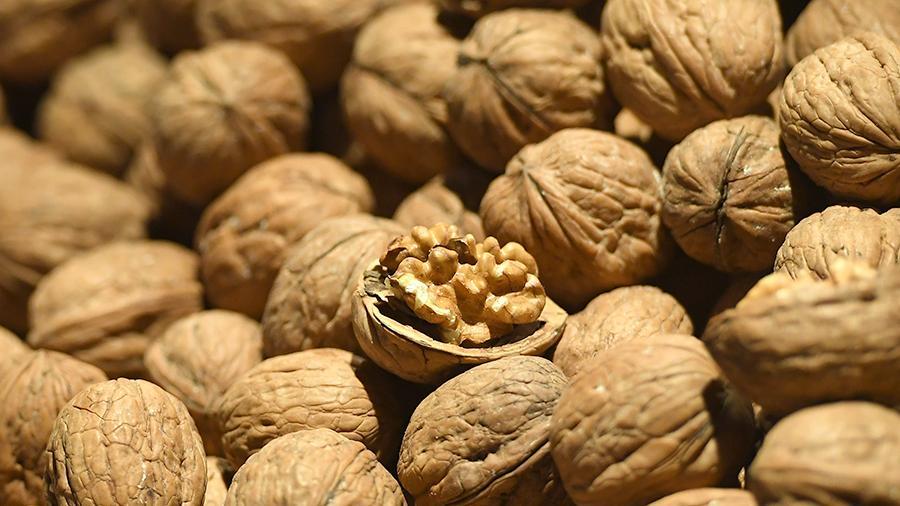 Орехи с пользой: Диетолог назвала максимальную дозу для похудения