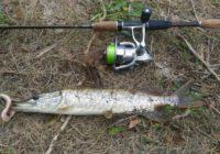 Спиннингистов Оренбуржья приглашают на «большую рыбалку»
