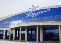 В минспорта заявили о необходимости капитального ремонта ледового дворца «Звездный»
