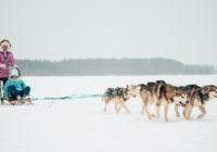 ICE VALDAICE: как попасть на забег по Валдаю?