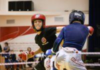 Первенство по ММА: В Оренбурге определили сильнейших спортсменов области