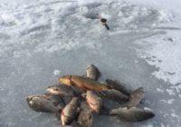 В Оренбурге пройдет чемпионат по рыбной ловле