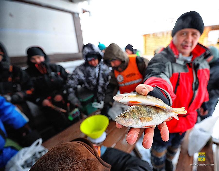 Мормышки наготове: в Оренбурге пройдёт «большая рыбалка»