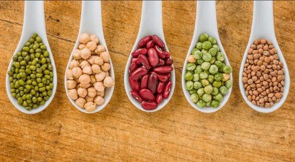 Чем полезны бобовые продукты и что это такое?